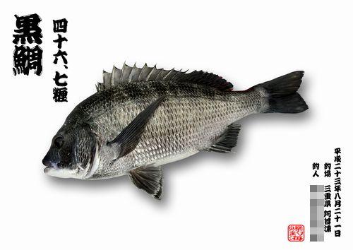 Hanazaki500